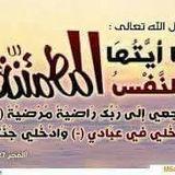 Mahmoud Abdoo