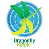 Dragonfly Ripple: Bringing Up