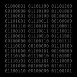 Binary_Intellect