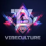 Vibe Culture