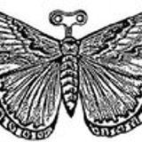 Thé Clockwork Moth
