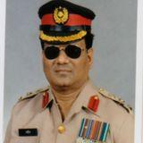 Shahiduddin