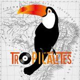 Tropicalités