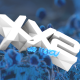 XX2 on WXCU