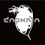 clubdaphnia