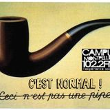 C_est_Normal_Radio_Campus_Mtp