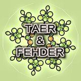 Taer & Fehder