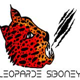 Leoparde Siboney
