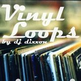 The Vynil Loops