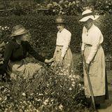 Sunnyvale Garden Society