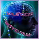 TechnoMusic_Soulfood