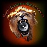Reggae Promotion in Motion >>>