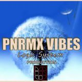 Pnrmx Vibes ( L.S TEAM )