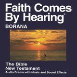 Borana (Oromo) Bible