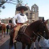 Jose Manuel Vivanco Hernandez