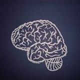 Cerebral Blueprince Pa-chaow