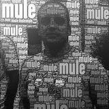 Mule @ Kellerkinder 05.03.2017