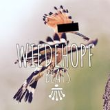 Wiedehopf Beats by Till West