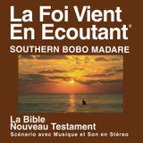 Bobo Madare du Sud Bible - Bob