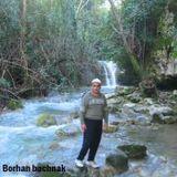Borhan Bashnak