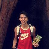 Tyger Forest