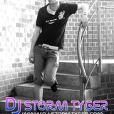 DJ Storm Tyger