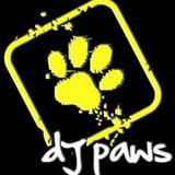 DJ_PAWS
