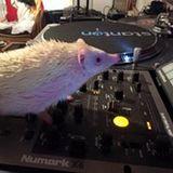 DJ creep