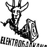 EleKtroBalKana live SoireeDeVotanique 11Nov2016
