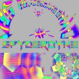 Spyderdyne