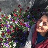 Neda Ahmadi
