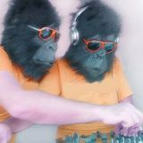 Radio Gorila