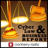 Cyberlaw and Business Report o