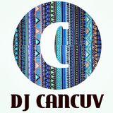 DJ CANCUV