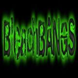 BleachBANGS/Ragdoll at Rocklahoma 2014