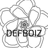 DEFBOIZ