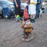Stephen Gnome
