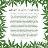 Russ AudioKush