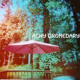 Achy Dromedary