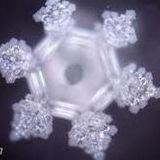 Sashay Shantay Crystalized
