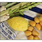 Barak Shalom