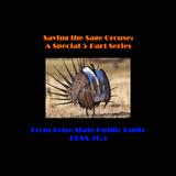 Saving the Sage Grouse