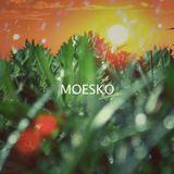Moesko