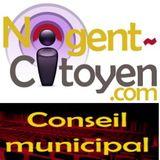 Conseil municipal du 15 novembre 2010