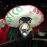 Rodeo Xochimilco