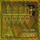 ElasticChords
