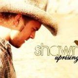 Shawn Thiessen