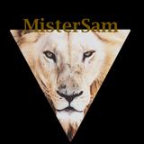 MonsieurSam
