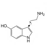 Seroton