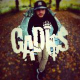 GADISS